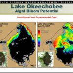 Lake Okeechobee potential for algae blooms